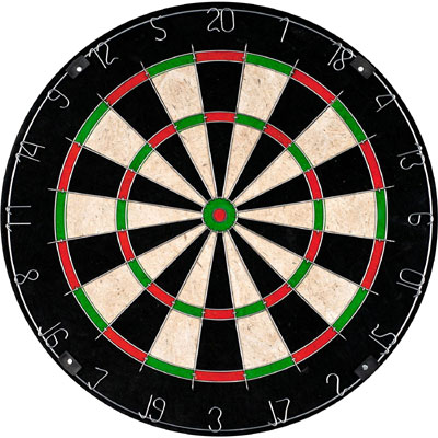 TG Champion bristle dartboard